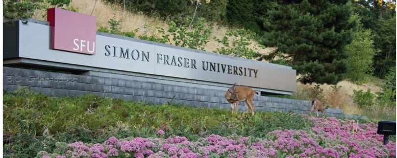 Image result for images for simon fraser university